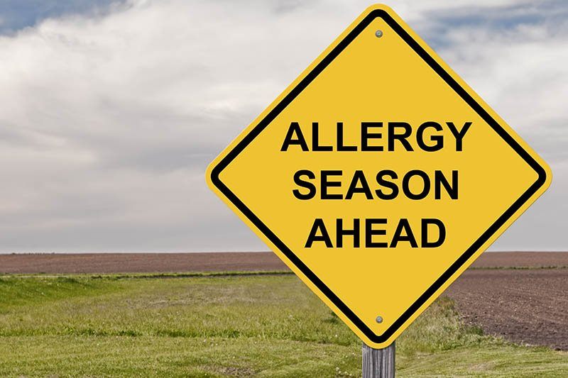 5 Tips to Improve Your Home's Air Quality During Allergy Season